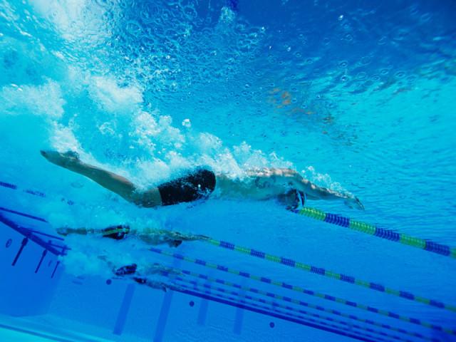初級泳訓班